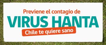 DEPARTAMENTO DE SALUD DE RENGO, LLAMA A TOMAR PRECAUCIONES Y PREVENIR CONTAGIO DE VIRUS HANTA.