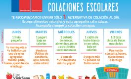 DEPARTAMENTO DE SALUD DE RENGO RECUERDA DAR CUMPLIMIENTO A LEY 20.206 DE KIOSCOS SALUDABLES Y COMIDA SANA EN ESTABLECIMIENTOS ESCOLARES.
