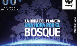 25 DE MARZO: En esta Hora del Planeta piden más esfuerzos de Chile para efectividad del Acuerdo de París