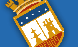 BASES PARA LLAMADO A CONCURSO PÚBLICODEPARTAMENTO DE SALUD MUNICIPAL DE RENGO, CARGO DIRECTOR(A) CESFAM