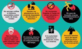 EL 99,7% DE LOS INCENDIOS FORESTALES RECAE EN LA FALTA DE CUIDADO DE LAS PERSONAS