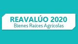 Portal Reavalúo Bienes Raíces Agrícolas 2020