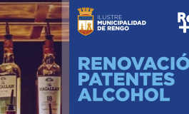 ATENCION CONTRIBUYENTES QUE POSEAN PATENTES DE ALCOHOLES