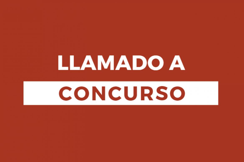 LLAMADO A CONCURSO PARA PROVEER LOS SIGUIENTES CARGOS PARA EL PROGRAMA ESTRATEGIA LOCAL DE DESARROLLO INCLUSIVO