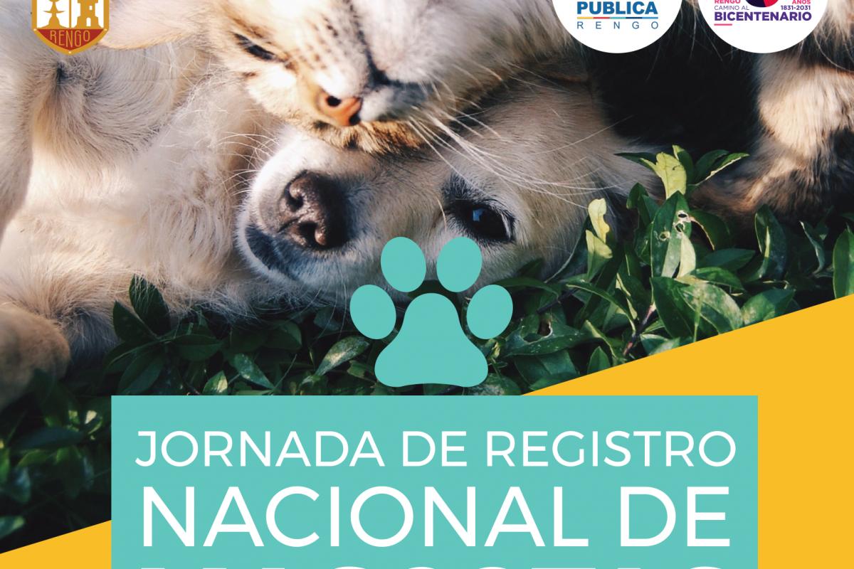 JORNADA DE REGISTRO NACIONAL DE MASCOTAS